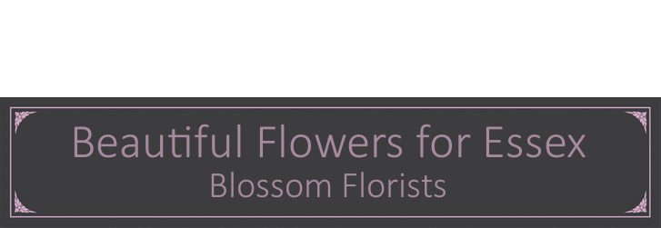 Blossom florists for funeral and wedding flowers in Essex