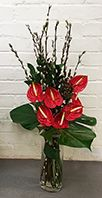 Corporate vase comprising Anthuriums and Pussy Willow