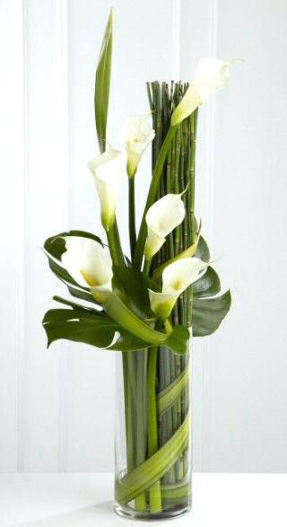 White Calla Lilys in a vase